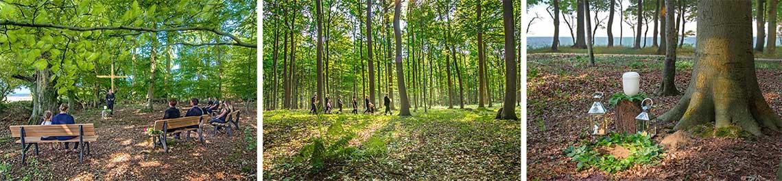 Eine Trauerzeremonie selbst gestalten im Begräbniswald ist dies möglich, in Mitten der Natur, an der Küste die schönste Grabstelle der Welt finden.