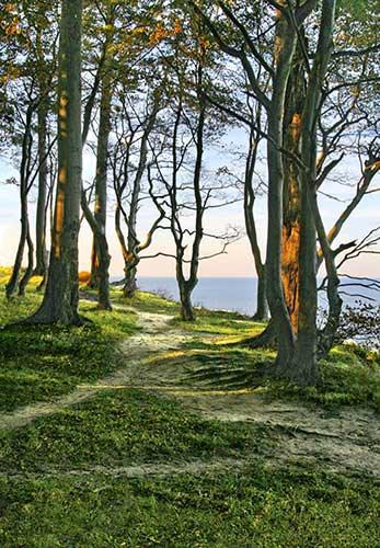 Goldene Wiegen - ein Schatz bei Friederikenhof nahe Putlos und Oldenburg ist eine der Sagen von Ostholstein an der Ostsee