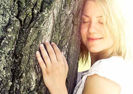 Schon zu Lebzeiten den letzten Ort der Ruhe finden im Begräbniswald Freden opn Kliff als Alternative zu anderen Bestattungswäldern bzw. Ruheforst oder Friedwald ist das möglich